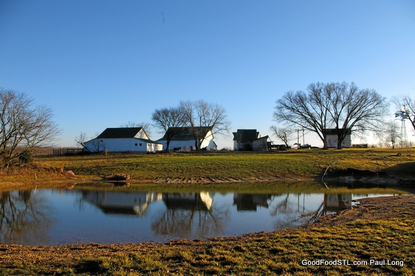 Barns and pond: a Fall reflection