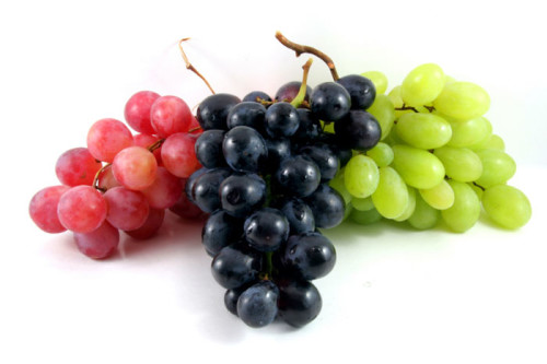 red, purple and green grapes