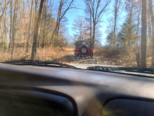 Jeep in woods