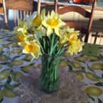 Wildflowers: First Sign of Spring
