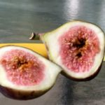 Fig Tree: The Fascinating Fruit