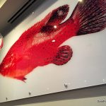 Clayton Welcomes 801 Fish