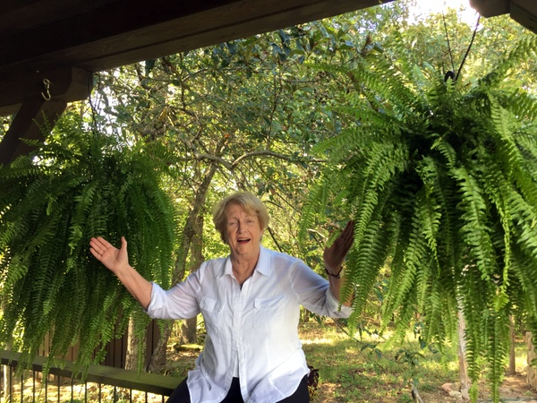 Jean and ferns