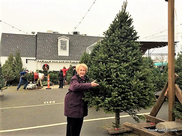 Jean Christmas tree Ted Drewes 2016