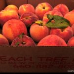 A Peachy Summer Pie