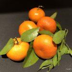 Satsuma Mandarin Oranges
