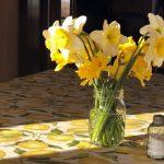 Springtime in the Ozarks