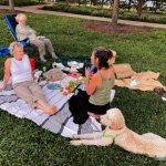 A Picnic in the Park